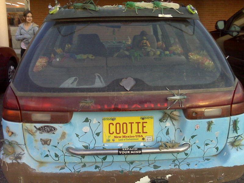 Cootie 1