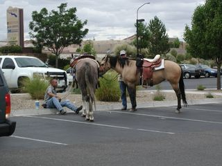 Horse parking 1