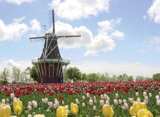 Windmill_IsleHolland_credit_SaraSimmons
