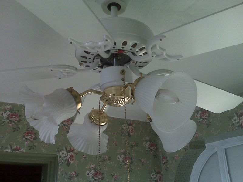 New light globes