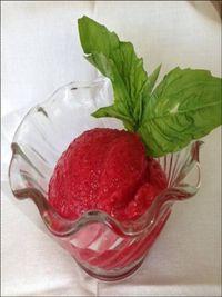 Cranberry sorbet