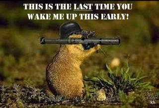 Groundhog with bazooka
