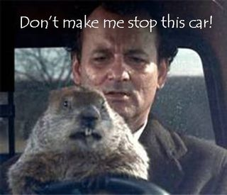 Groundhog stop this car